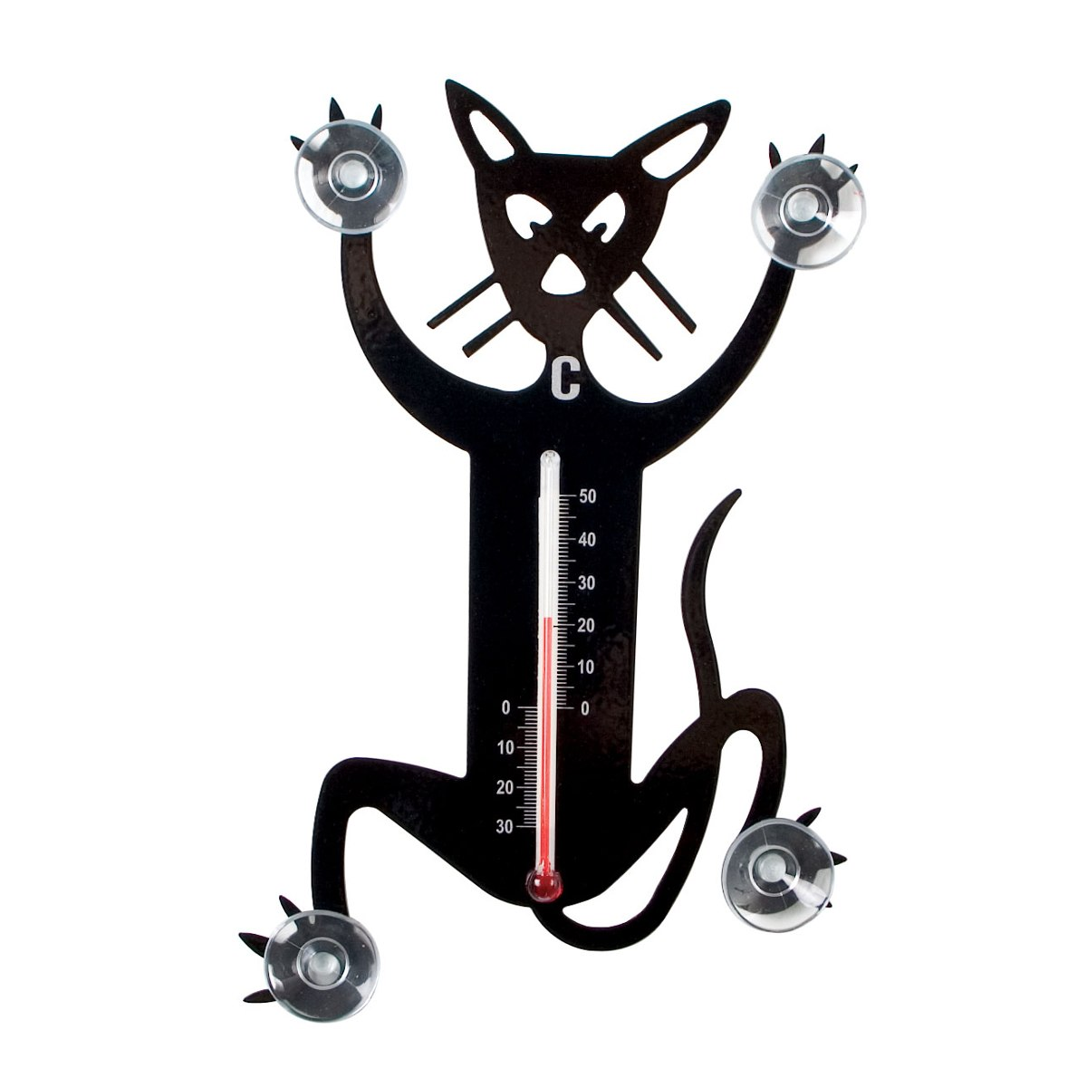 Outdoor Thermometer Katze