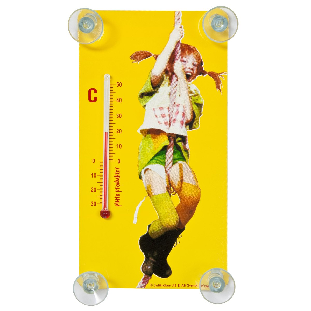 Outdoor Thermometer Pipi